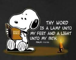 25 snoopy quotes ideas snoopy peanuts quotes