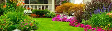 home and garden captivating interior design ideas