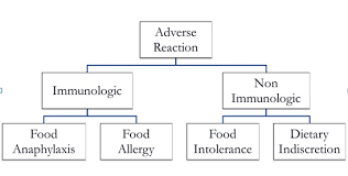 choosing the right elimination diet for food allergic cases