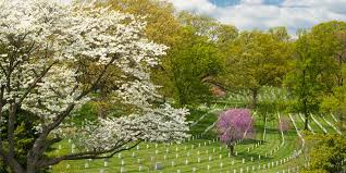 arlington national cemetery facts and history