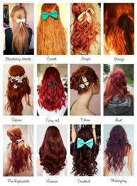 mahogany hair color chart image result for shade of red hair blue pinterest redheads