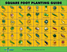 Companion Planting Garden Layout A Gardening Notebook Thehomesteadingboards