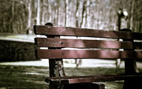 Background With Chair Bench Full Hd Wallpaper And Background 2560x1600 Id 447404