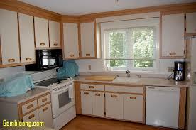 kitchen cabinets in phoenix kitchen kitchen cabinets phoenix beautiful kitchen cabinet doors