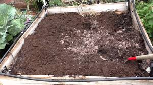 preparing u0026 maintaining soil for raised beds youtube