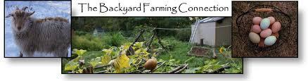 Backyard Homestead Book by The Backyard Farming Connection E Books