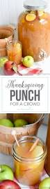 best 25 punch recipes ideas on pinterest sparkling punch punch