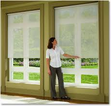 Cordless Window Shades Hunter Douglas Cordless Designer Screen Window Shades