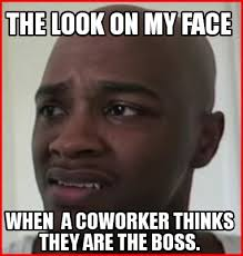 Coworker Meme - meme creator the look on my face when a coworker thinks they are