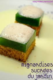 cuisine moleculaire recette recette des mignardises sucrées du jardin cuisine moléculaire