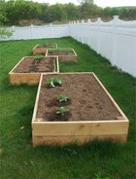 how to build a garden in one day garlic plants and gardens