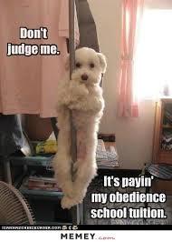 Funny Stripper Memes - stripper memes funny stripper pictures memey com