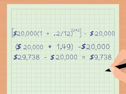 Six Flags Payments 4 Ways To Calculate Compound Interest Payments Wikihow