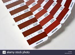 fanned out red shades of the pantone color guide stock photo