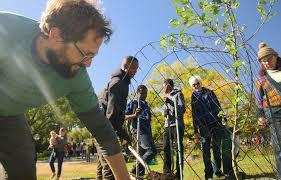 Urban Gardening Philadelphia - urban food forests make fruit free for the picking the salt npr