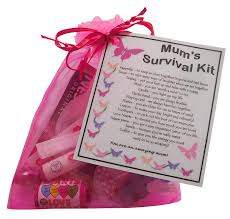 mum u0027s survival kit gift great present for birthday christmas