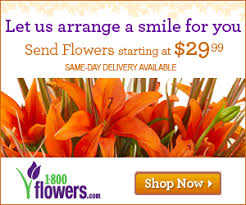 flowers coupon code 1 800 flowers coupons 1 800 flowers promo codes birthday flowers