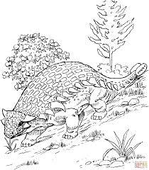 ankylosaurus coloring page dinosaur ankylosaurus coloring pages
