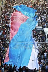 Pride Flag Colors Transgriot Happy Transgender Pride Flag Day