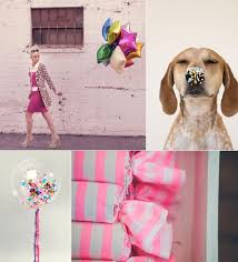 178 best cute cool and crazy images on pinterest