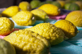 etrog for sale what to do with that etrog feed the spirit