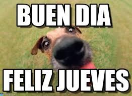 Buen Dia Meme - buen dia perro que lame meme on memegen