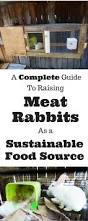 90 best raising rabbits images on pinterest meat rabbits