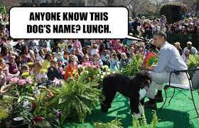 Obama Dog Meme - white house easter egg roll easter memes with president obama