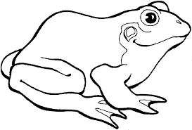 best green frog coloring pages for kids womanmate com