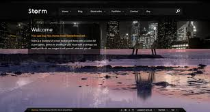 wp themes video background 35 excellent dark wordpress themes want your website to rock