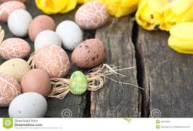 happy easter decorations happy easter easter decoration stock photo image of flower