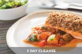 cooking light 3 day cleanse healthy meals made easy home delivered chef prepared ready made