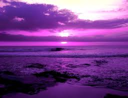 color inspiration purple sunset purple sky and passion