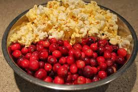 pudica u0027s food corner christmas cranberry popcorn garland
