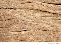 weathered wood texture weathered wood texture stock picture i1898952 at