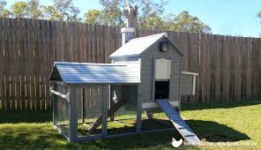 Backyard Chicken Coop Ideas Painting Your Chicken Coop Ideas And Photos