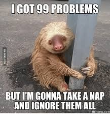 99 Problems Meme - got 99 problems but itm gonna take a nap and ignore them all memeful