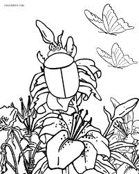 printable bug coloring pages kids cool2bkids
