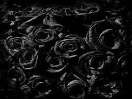 theme black rose theme art manipulation