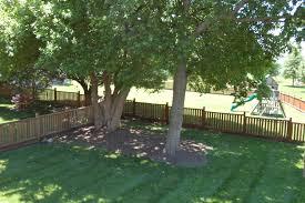 Backyard Trees For Shade - landscapeassoc de pere wi