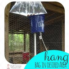 Backyard Fly Repellent How To Make A Natural Fly Repellent Hometalk