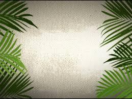 palm for palm sunday palm sunday background loop 1 4thoughtmedia worshiphouse media