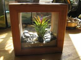 plant terrariums here u0027s an eclectic indoor plant ter