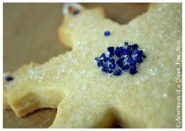 gluten free casein free christmas cookie recipes food cookie recipes