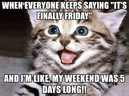 Finally Friday Meme - when everyone keeps saying it s finally friday and i m like my