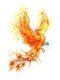 the 25 best phoenix tattoos ideas on pinterest tattoo pheonix