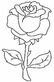 imagenes para colorear rosas extraordinarias imagenes de rosas lindas para colorear imágenes de