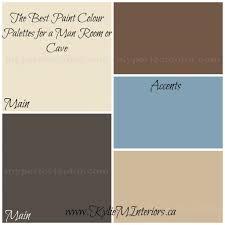 the best paint colours or colour palette for a man cave or man