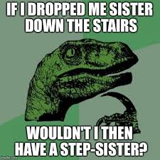 Sister Memes Funny - 20 totally funny sister memes we can all relate to sayingimages com