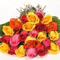 Multi Colored Roses Pinaygifts Multicolored Roses